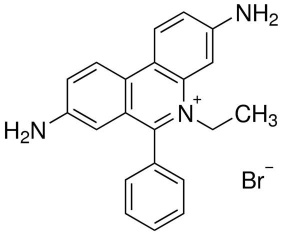 溴化乙啶/1239-45-8分子结构式