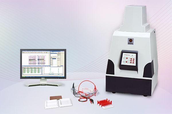 Tanon 2500/2500R全自动数码凝胶图像分析系统图片